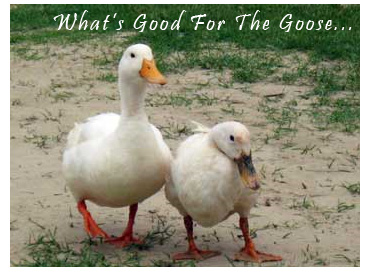 What's Good for the Goose is Good for theGander.